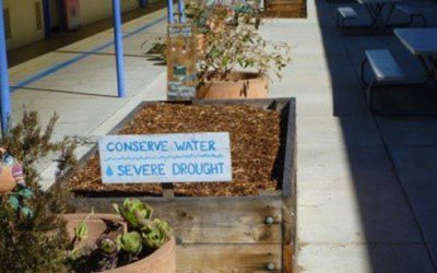 Santa Monica Malibu Unified School District – Drought Response Stormwater Capture Project